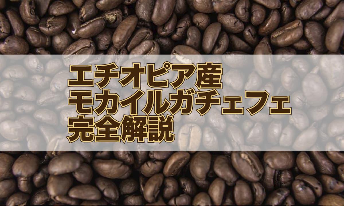【コーヒー豆解説】エチオピア産 モカイルガチェフェとはアイキャッチ