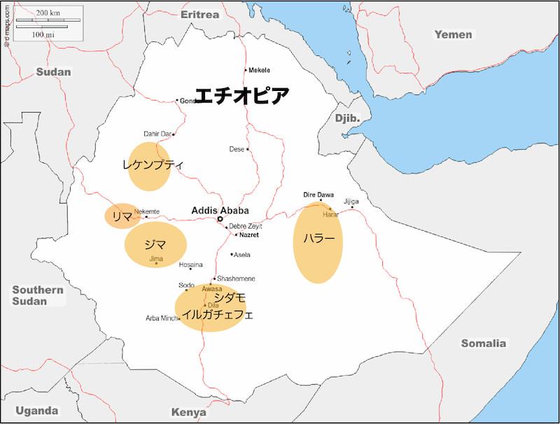 エチオピアのコーヒー豆 生産地の特徴