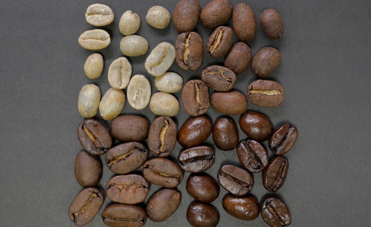 まとめ コーヒー生豆どこで買う?【おすすめネット通販4選】