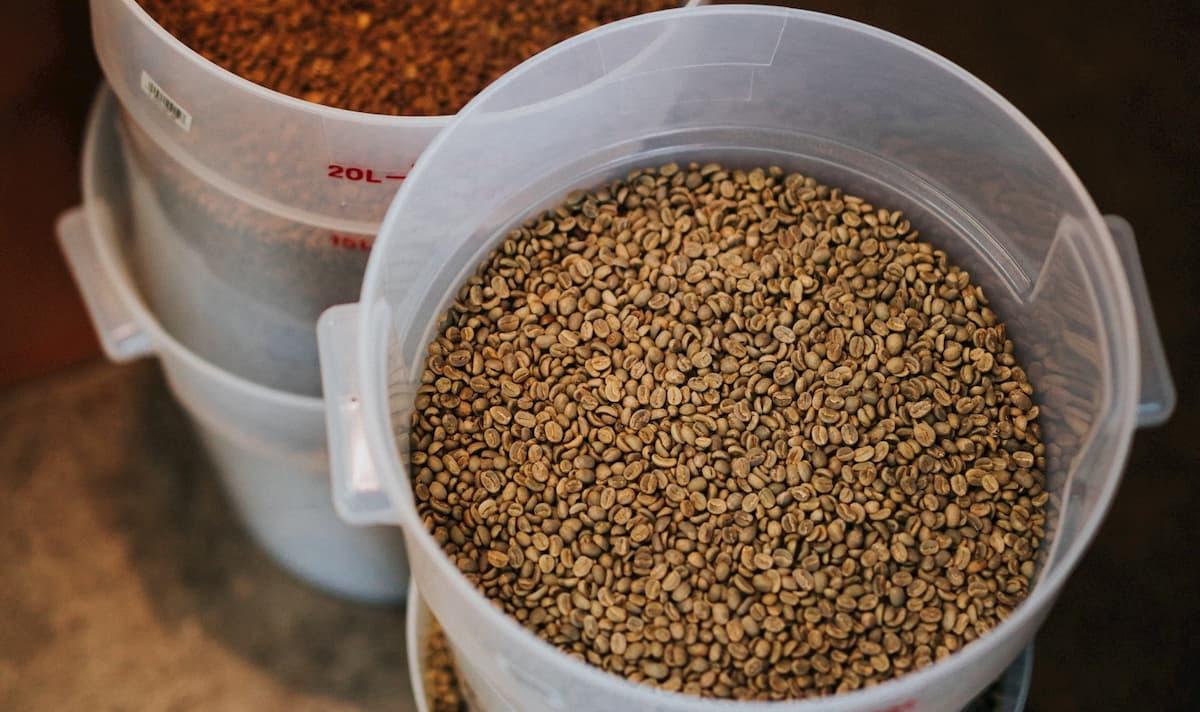 Amazonで買えるおすすめコーヒー生豆10選+おためしセット3種