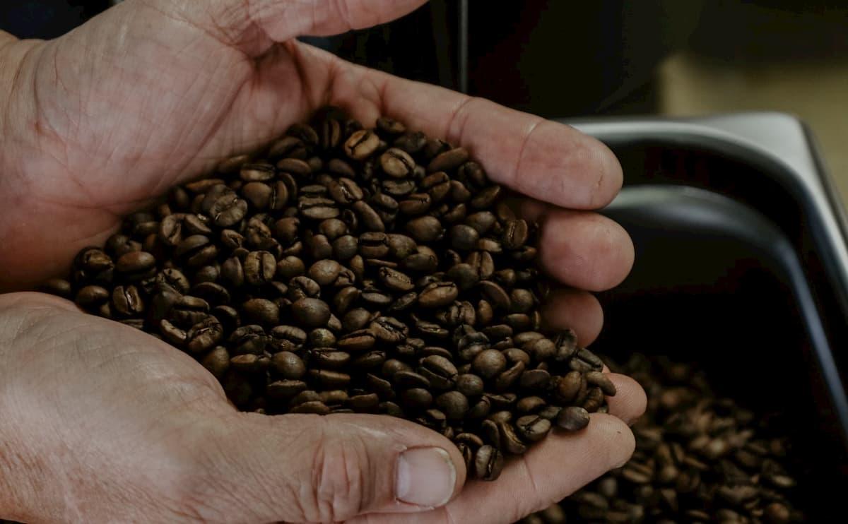 コーヒー豆の焙煎レベル