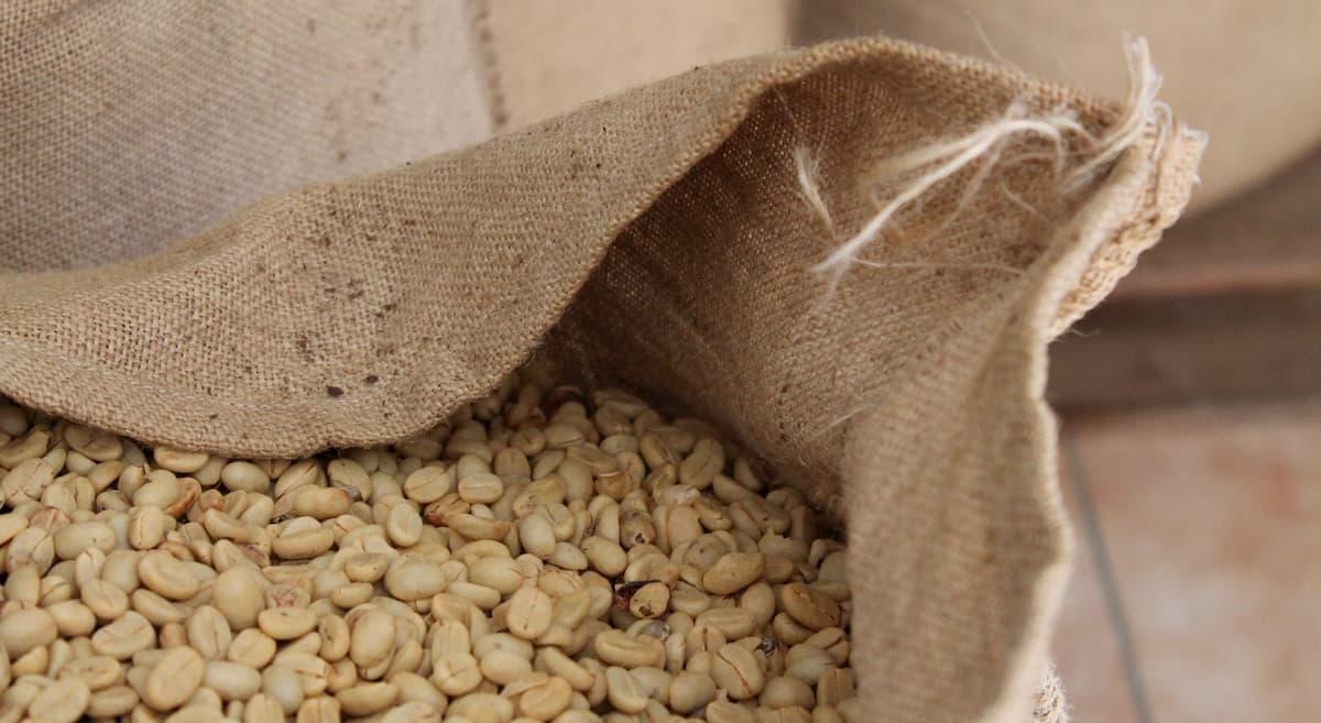 ーヒー生豆の保存期間・保管方法