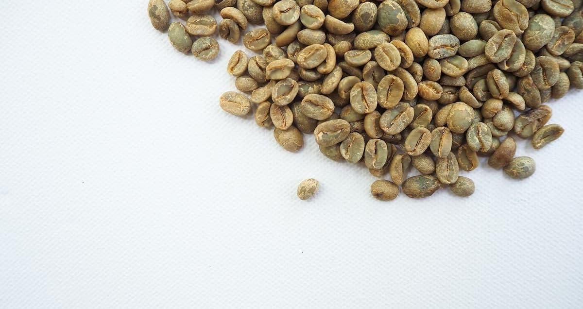 コーヒー生豆の保存期間・保管方法について まとめ