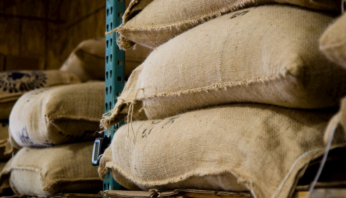 コーヒー生豆の保管方法について