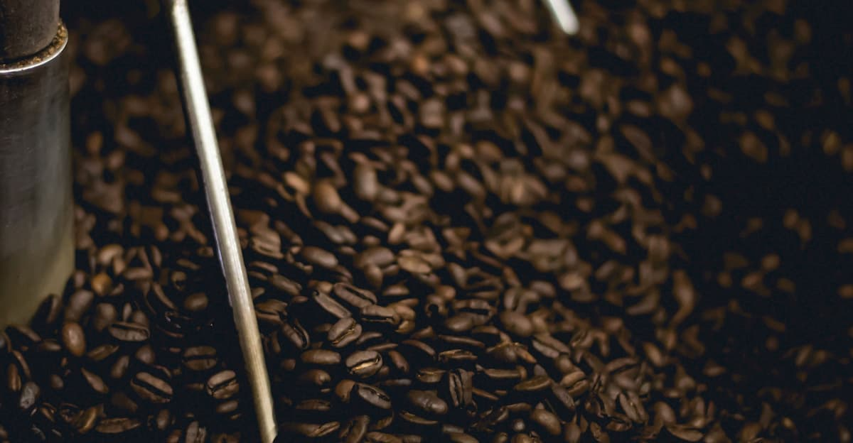 コーヒー焙煎手順⑦ 12段階の焙煎レベルで焼き分ける