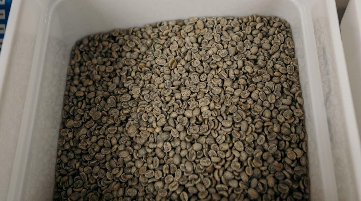 コーヒー焙煎手順③ コーヒー豆に合わせた焙煎レベルの設定