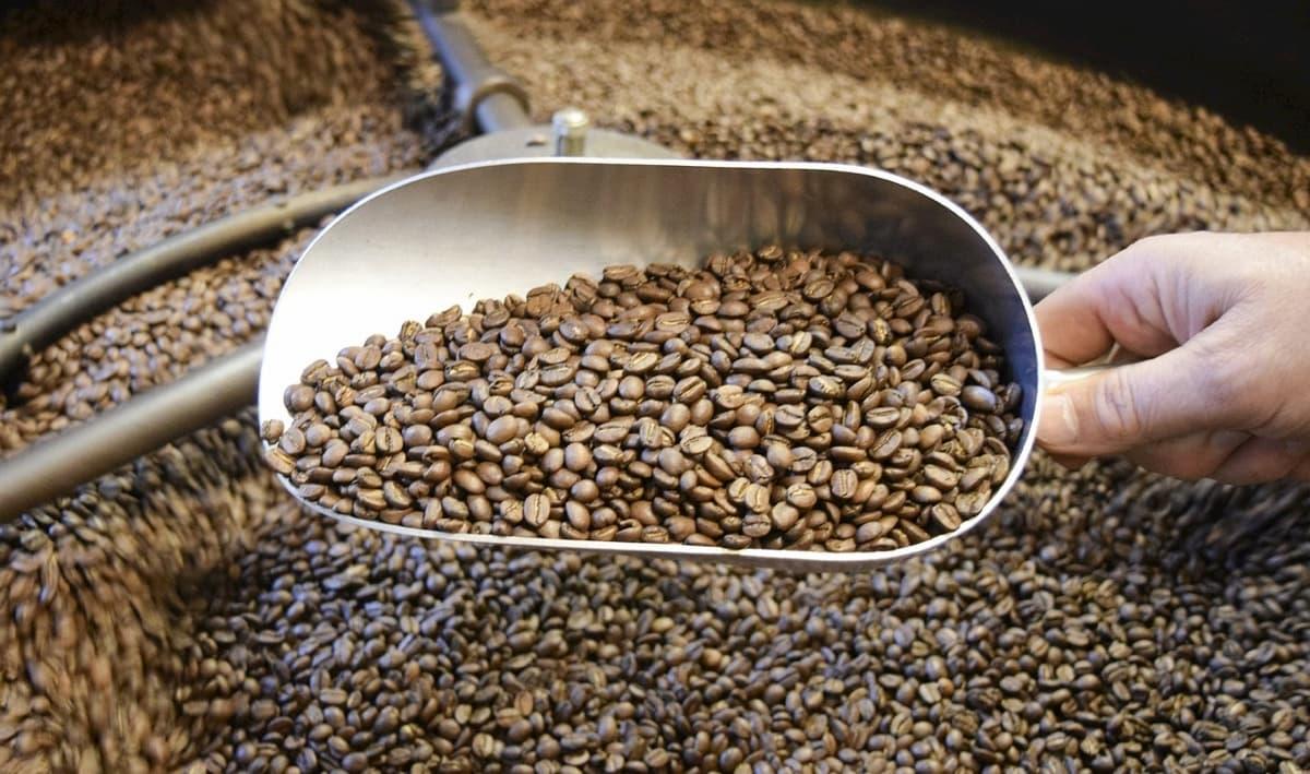 コーヒー焙煎手順② 7段階の焙煎レベルを焼き分けよう