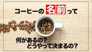 コーヒー豆の名前、全部教えます。【何があるの?どうやって決めるの?】