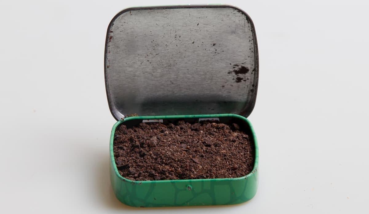 コーヒー豆 賞味期限切れの豆の活用方法