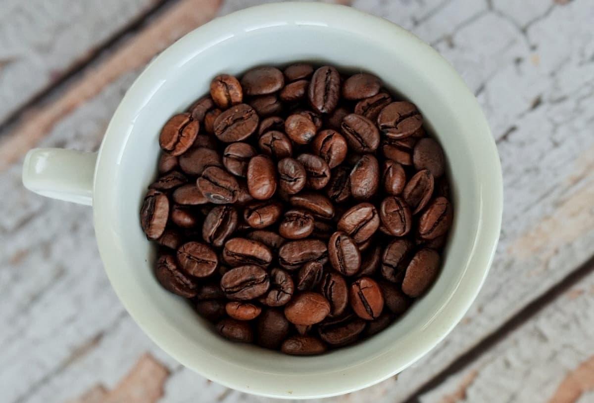 賞味期限切れのコーヒー豆って飲めるの?