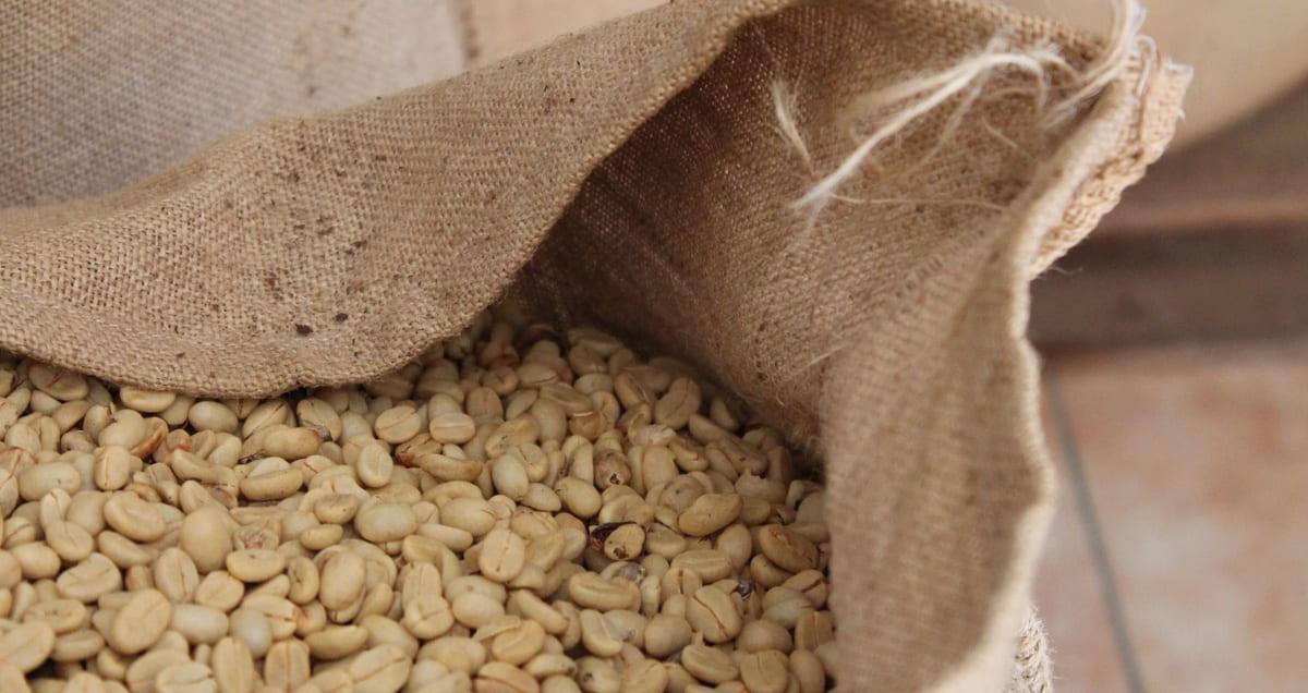 コーヒー生豆商社との取引のやり方