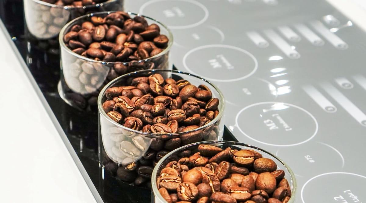 珍しいコーヒー豆 人気ランキング